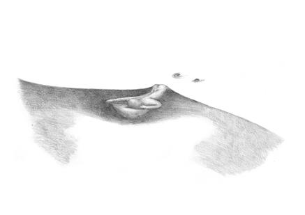 Le naufragé de la dernière nuit - Caroline Froissart / impression offset - 42x29,7 cm - 12 exemplaires - 200 €